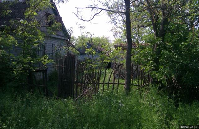 Печально заваленный забор