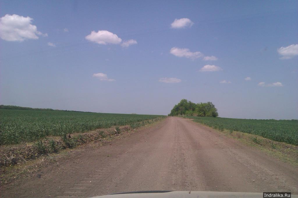 Грунтовка в Краснодарском крае между полей